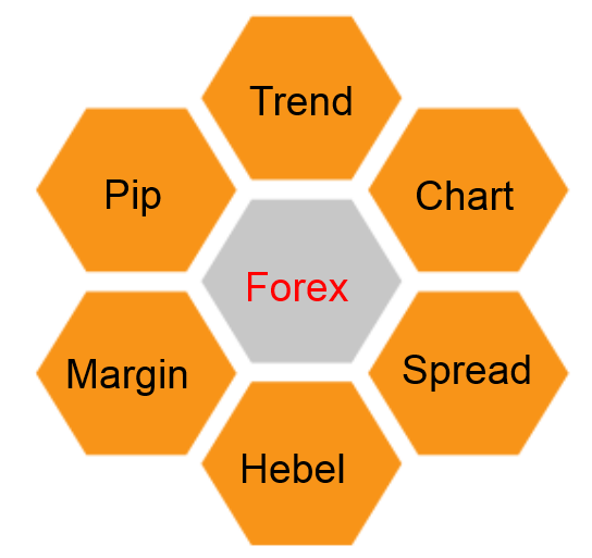 Forex Begriffe